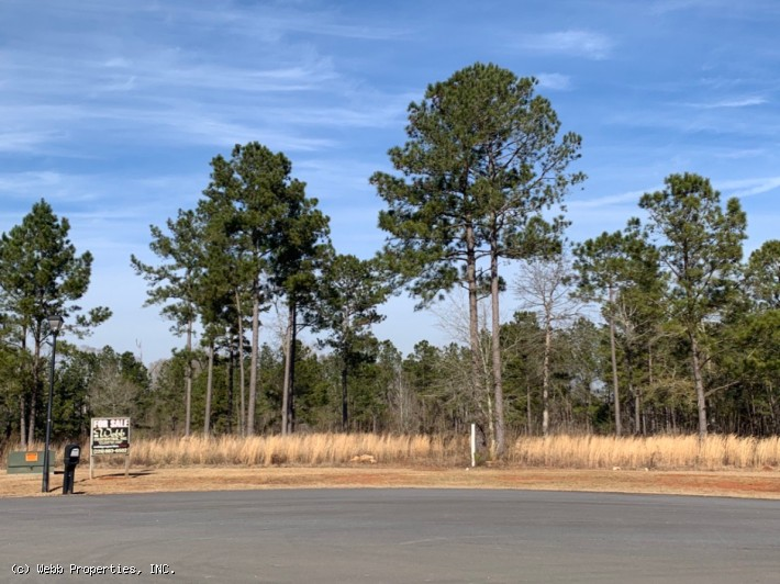 Westover Business Park Lot - Albany, GA